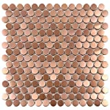Tenedos Premium Penny Round Stainless Steel Mosaic Tile on Mesh Mounted Sheet for Kitchen Backsplash Wall Bathroom Shower Floor Tiles (10 Sheets) (Bronze Copper)