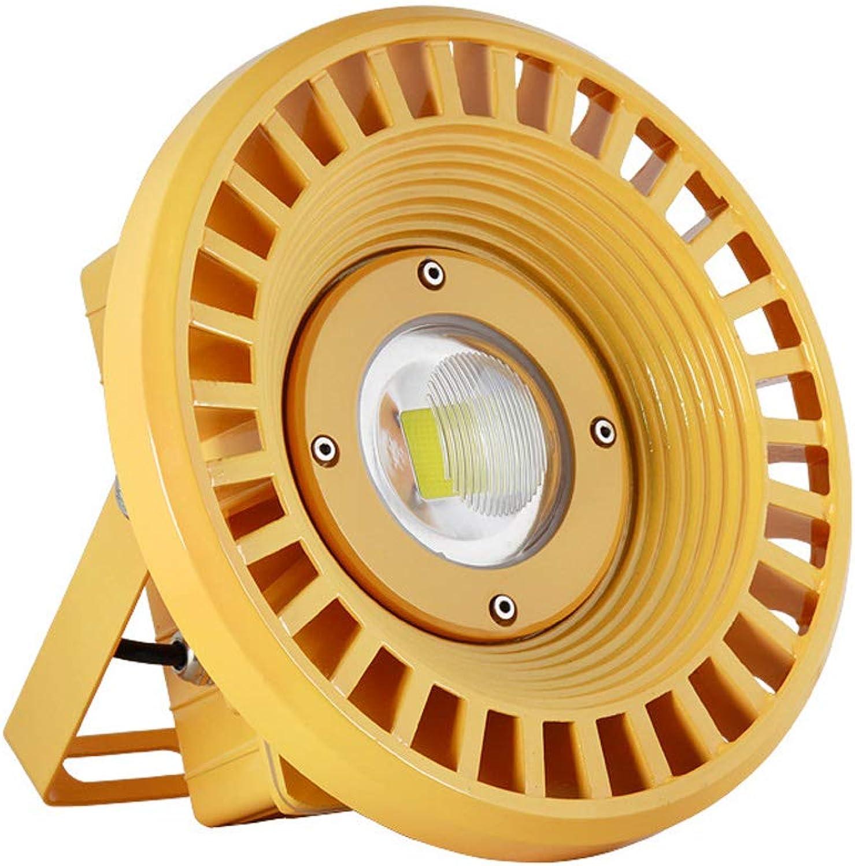 LED Explosionsgeschützt Lampe Flutlicht Warenhaus Beleuchtung 30W50W80W100W Bergwerk Werkstatt Drei Anti-Flutung Beleuchtung (gre   30W)