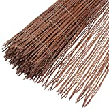 Windhager 02193 Natte Brise Vue Osier Naturel Marron 1 x 3 m