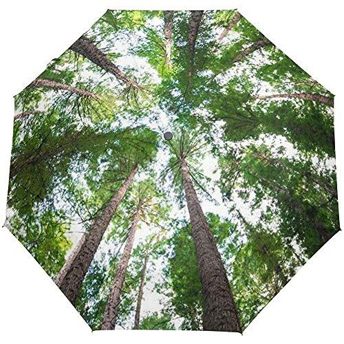 Forest Sky Sunlight Paraguas a Prueba de Viento Auto Open Close 3 Plegable Sun Umbrella-1Y9-96