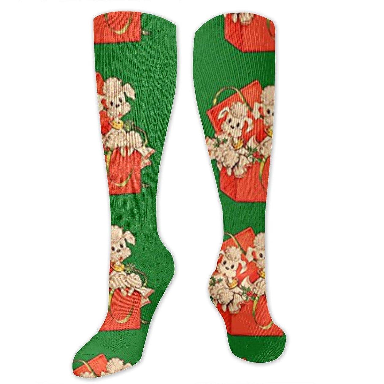 貸し手惨めな行靴下,ストッキング,野生のジョーカー,実際,秋の本質,冬必須,サマーウェア&RBXAA Poodles Socks Women's Winter Cotton Long Tube Socks Knee High Graduated Compression Socks