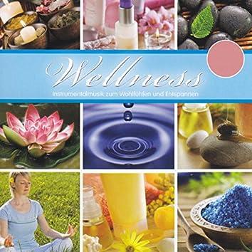 Wellness - Instrumentalmusik zum Wohlfühlen und Entspannen, Vol. 2