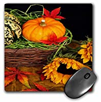 3drose LLC 8x 8x 0.25インチマウスパッド、Pumpkin and Squash in a basket with Sunflower (MP 36757_ 1)