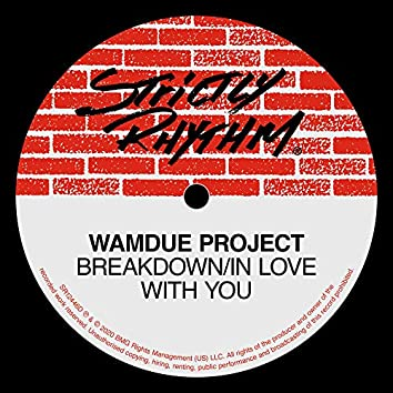 Breakdown / In Love With You (Remixes)