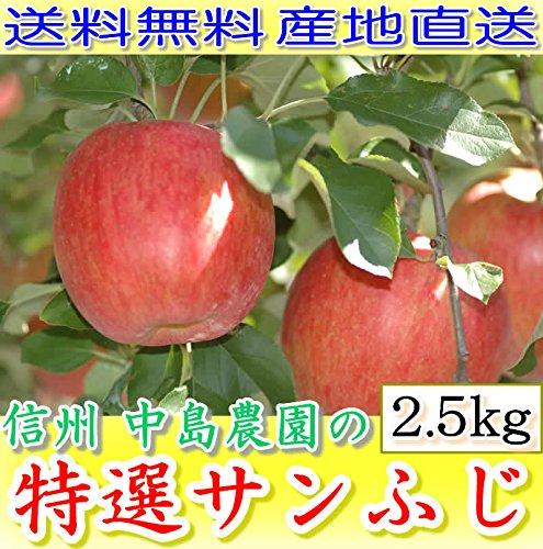 長野産 減農薬 りんご 糖度15度以上保証! サンふじ 贈答用 約2.5kg7〜8個入 林檎 リンゴ 産地直送
