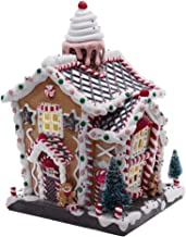 Kurt S. Adler 14-Inch Battery-Operated Light-Up Gingerbread House Table Piece, Multi