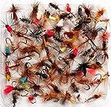 Lakeland Fishing Supplies 10, 25, 50 o 100 Moscas de Trucha secas Mixtas para Pesca con Mosca, Hook Size 18