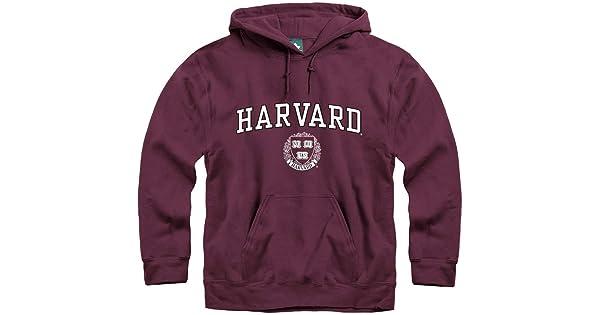 Classic Arch with University Crest Logo Premium Cotton Ivysport Hoodie Sweatshirt