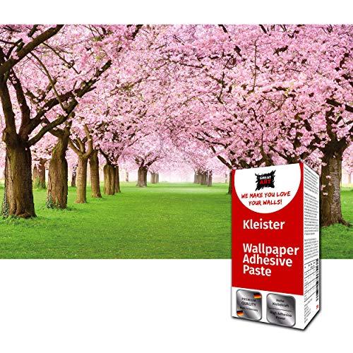 GREAT ART Fototapete Kirschblüten Allee 336 x 238 cm – Natur Japan Rosa Wald Blüten Lichtung Garten Kirsche Frühling Wandtapete Dekoration Wandbild – 8 Teile Tapete inklusive Kleister