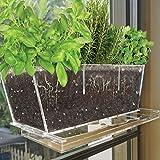 NIUXX - Maceta acrílica con bandeja de drenaje, macetas de cactus dulces con ventosa, maceta de flores para interior o exterior, decoración de la casa, jardín, cocina, grande, 30 x 10 x 13 cm