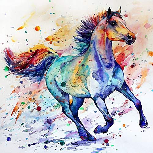 diamond painting horse Bougimal 5D Diamond Painting Cavallo Kit Completo