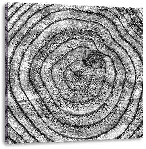 boomringenCanvas Foto Plein | Maat: 70x70 cm | Wanddecoraties | Kunstdruk | Volledig gemonteerd
