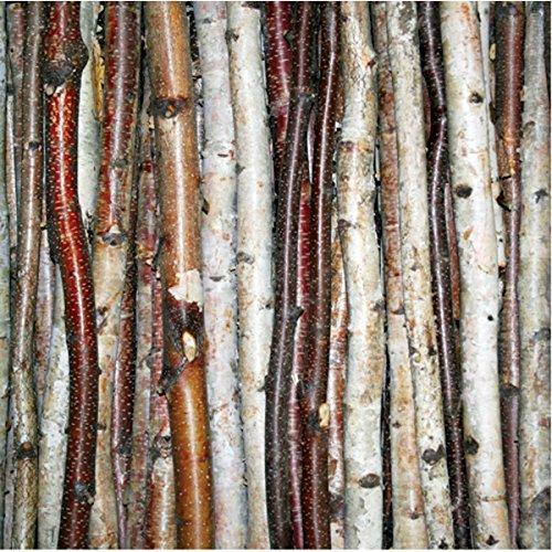 """Wilson Enterprises Birch Stick Packs (Roped 3 pack (48"""" long x .5"""" - 1"""" diameter))"""