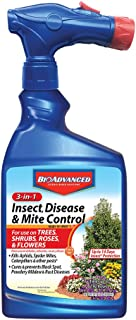 Best bayer fungus control for trees Reviews