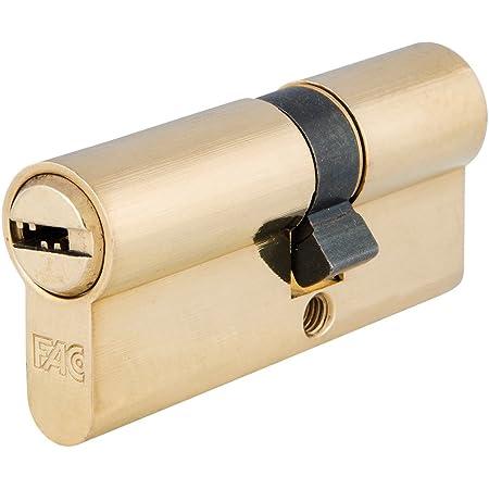 Niquelado leva corta 30x40 mm Tesa Assa Abloy 3012432 Cilindro Tesa Seguridad T60 //30x40