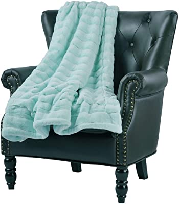 1 Pc Luxurious Casual Aqua Blue 50x60 Throw Blanket Modern Style Gorgeous Solid Color Stripe Pattern Super Mink Blanket All Seasons Contemporary Faux Fur Warm Soft Blanket Animal-Friendly