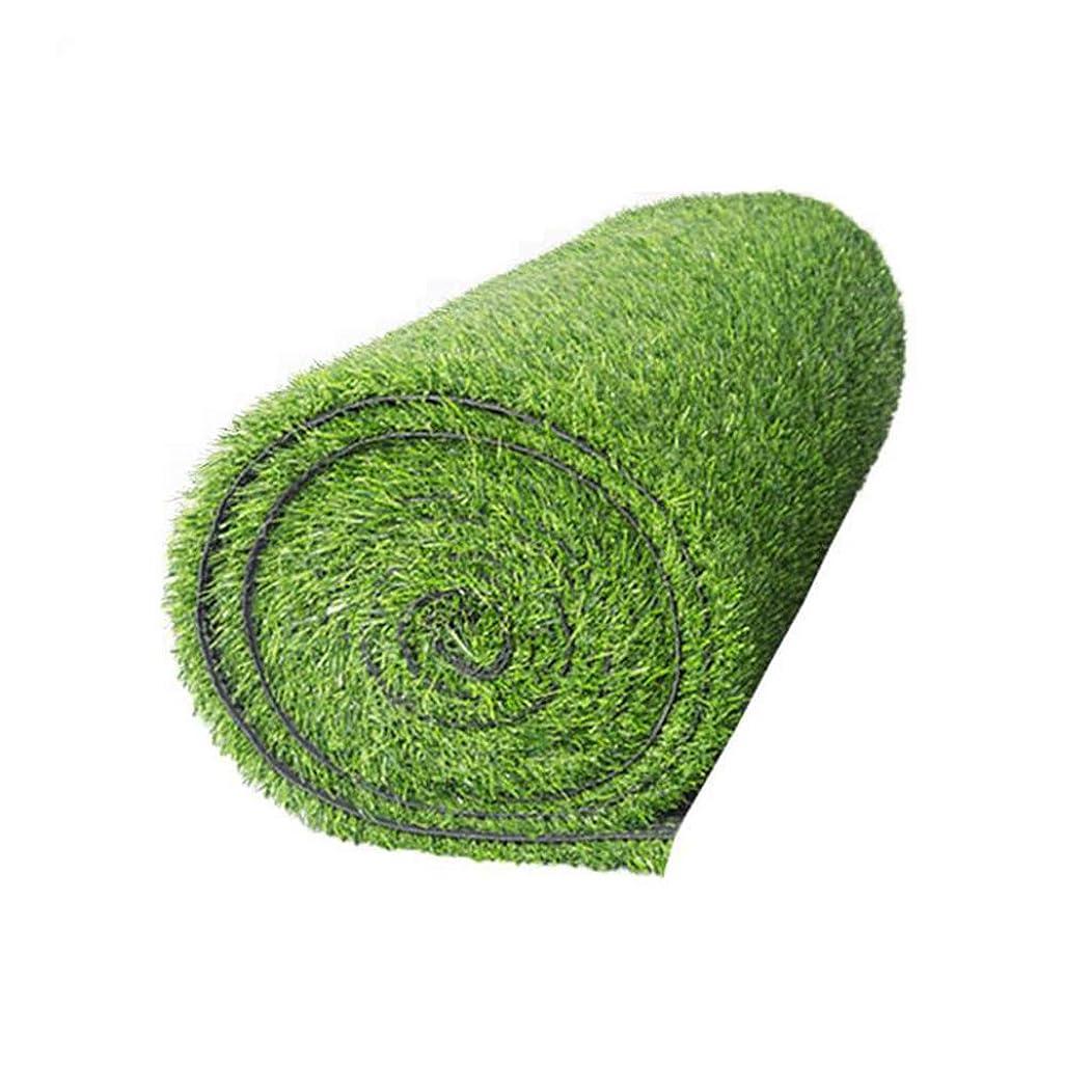 何でもみすぼらしい試すALYR 人工芝 じゅうたん、現実的 人工芝 芝 人工 芝生 グラスカーペット ラバーバッキングヒゲ10mmのテラス用,Green_6x51ft/2x17m