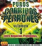 Entre negocios Prohibidos by Puros Corridos Perrones (2010-10-26)