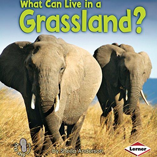 What Can Live in a Grassland? copertina