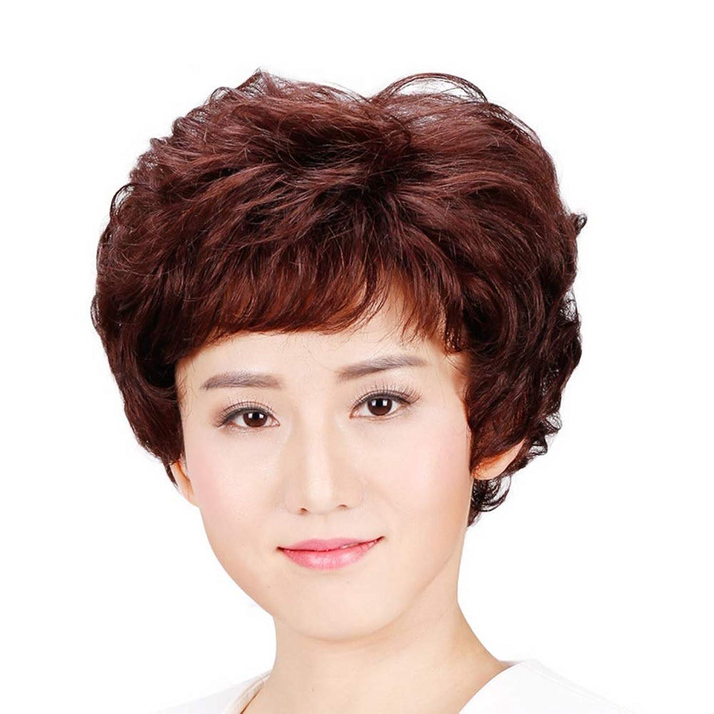 勉強する海上王位Isikawan 女性のための髪中年かつら母の贈り物天然人毛ショートストレート (色 : Dark brown, サイズ : Hand-needle)