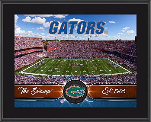 Florida Gators 10' x 13' Sublimated Team Stadium Plaque - College Team...