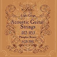 Aria AGS-200L フォスファーブロンズ アコースティック弦 2セット