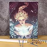 Dibujos animados niña mujer pintura por números paquete pinturas al óleo 40x50cm tableros por números nuevo diseño para venta al por mayor Pintura-por-números