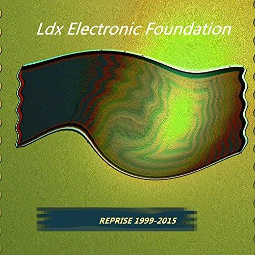 Ldx Electronic Foundation