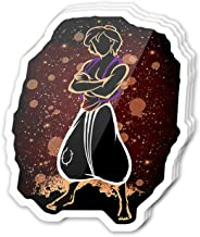 Cool Sticker (3 pcs/Pack,3x4 inch) The Agrabah Prince Stickers for Water Bottles,Laptop,Phone,Teachers,Hydro Flasks,Car