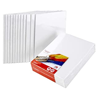 CANVAS PANELS 12 PACK - 8