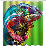 hipaopao Green Shower Curtain Lizard Wildlife Aniaml Theme Fabric Shower Curtain Sets Bathroom Decor with Hooks Waterproof Washable 72 x 72 inches Green Blue Pink