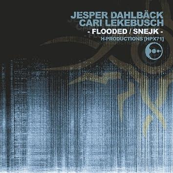 Flooded / Snejk