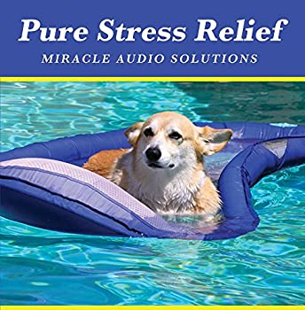 Pure Stress Relief CD - DEEPLY RELAXING - Works Fast - One Hour