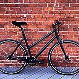 LHQ SingleSpeed Bicycle - StepThru Model