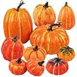 Funarty 10pcs Artificial Pumpkins Assorted Size Fall Pumpkins for Autumn and Thanksgiving Decorating