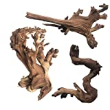 Null Pisces AM-GHOST024 24 Ghost Wood Sandblasted Branchy