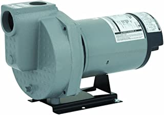 Flint Walling/Star HSPJ20P1 Do It Best Sprinkler Pump, 2Hp