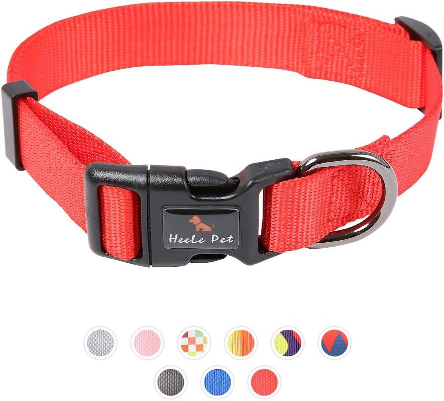 Genuine Free Shipping RAINDEE Dog Collar with Safety pet Locked half cat Buckle adjusttable