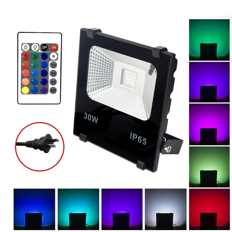 疫病惑星認識LED投光器 RGB 30W フラッドライト 16色 4モード ガーデンライト リモコン付き 防水仕様IP65 (ホリデー照明ライト、風景ランプ、ステージランプ)