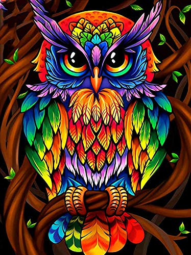 SUNKOO DIY 5D Diamond Painting Kits Owl Paint with Diamonds Kit Full Drill Owl Diamonds Art Kit for Kids Adults,12×16 inches Exotic Owl