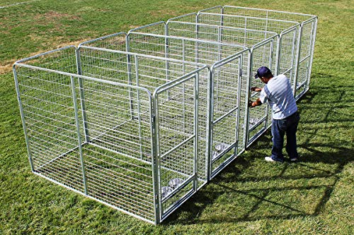 Cove Products Professional X5 K9 Kennel Store 4' X 8' Dog Kennel-Runs Full Stalls