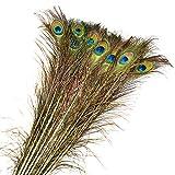 20 Pcs 90cm Réel Plumes de Paon Naturelles Plumes pour Décorations De Mariage Paon Naturelles avec des Yeux Décorations de Fête Décor À La Maison - Bleu Paon