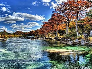 Frio River In Garner Stae Park Texas Hdr -Oil Painting On Canvas Modern Wall Art Pictures For Home Decoration Wooden Framed (20X16 Inch, Framed)