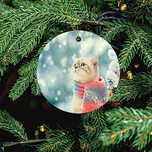 ALUONI Portrait of A Cat, Wearing Scarf, Outdoor in Christmas Ornaments 2020 Christmas Ceramic Pendant Personalized Creative Christmas Decorations Double Sided Christmas Tree Ornament SW13753 3PCS