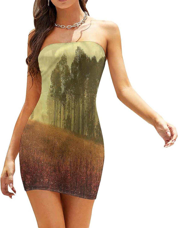 Women's Sleeveless Sexy Tube Top Dress Lonely Bare Tree Sunrise Sky Dresses