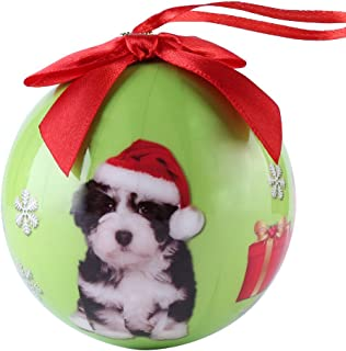 Cue Cue Pet Festive Ready to Hang Christmas Keepsake Havanese Puppy Ornament Shatterproof Ball