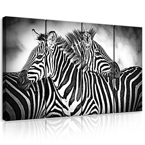 FORWALL Lienzo de Impresión–cuadro de cebras amf10092_ ps7Canvas Picture Print Natural Wild Animal Animales África Negro Blanco Zebra, lona, Schwarz und Weiss, S7 (120cm. x 80cm. (4x30x80))
