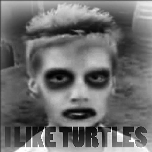 Image result for i like turtles