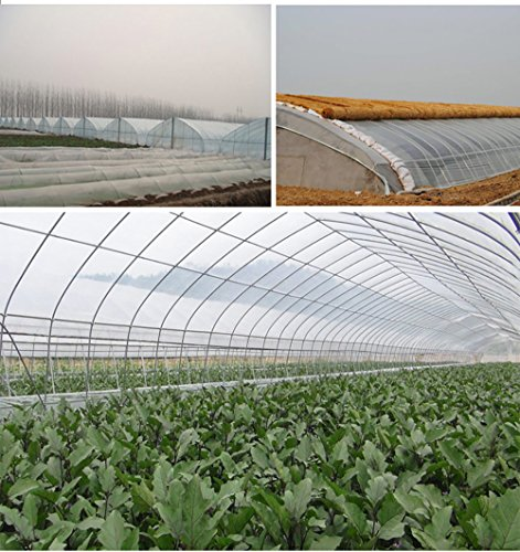 Originline Clear Plastic Film Polyethylene Covering for Greenhouse and Grow Tunnel,2.4mil 6ftx8ft