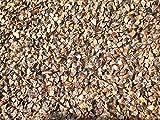AGROBITS 300 Sarrasin Graines de couverture des cultures communes comestibles, grains, de l'Alimentation Terrain de croissance rapide des semences